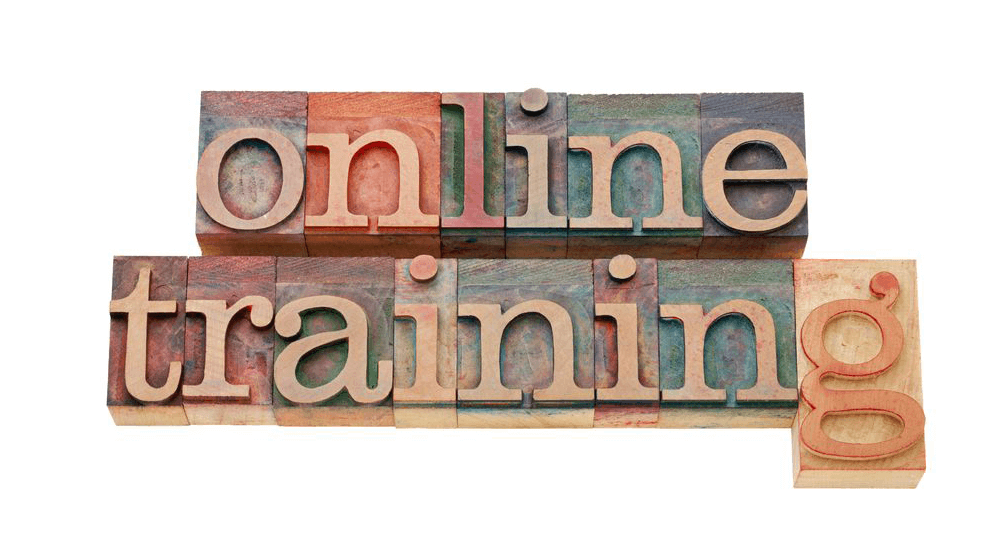 Online Training Systems in the Cloud